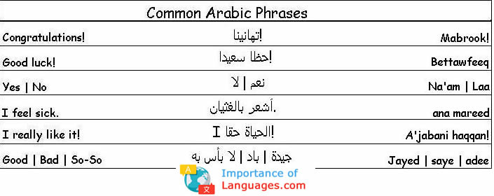 Common Arabic Phrases to help you around Arabic Speaking